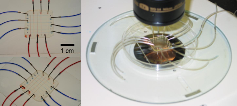 pfpe-teflon-microfluidic-chip