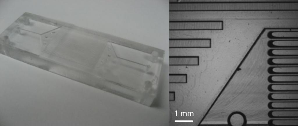 pmma-microfluidic-chips