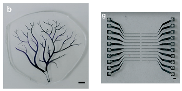 vacuum-filling-of-complex-microchannels-with-liquid-metals-microfluidics