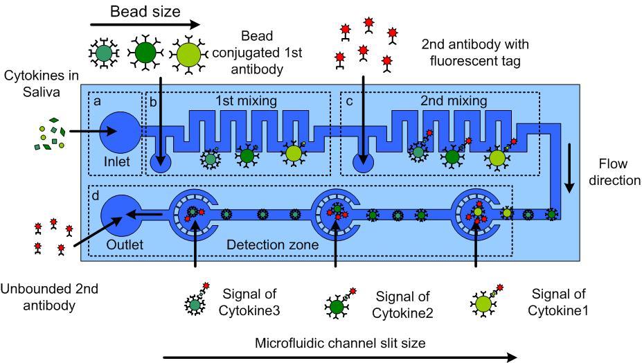 ELISA-test_microfluidics